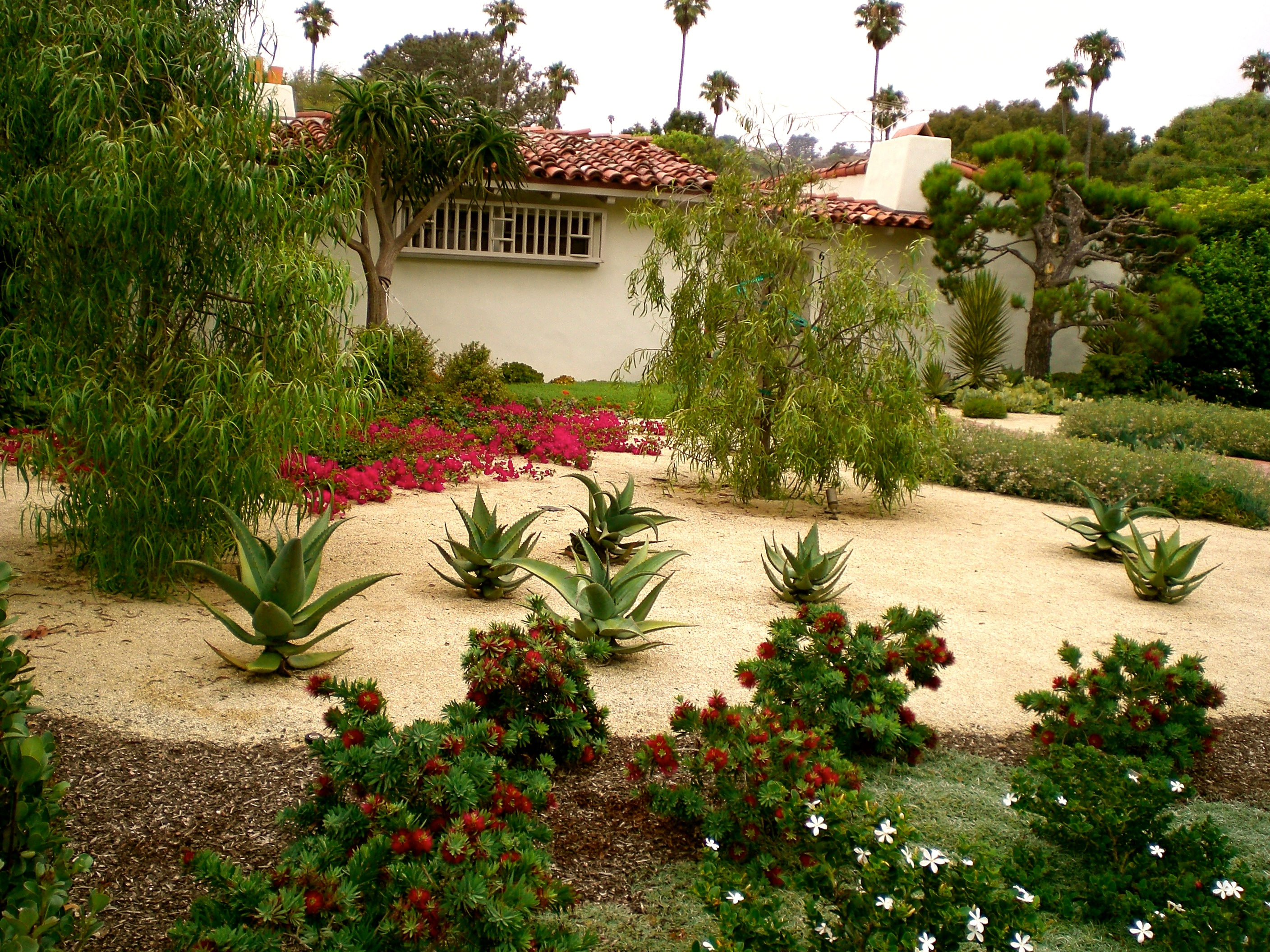 Drought Tolerant Todd Fry Landscape ArchitectsTodd Fry